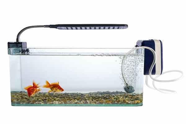 Oświetlenie Led Akwarium Serfinpl